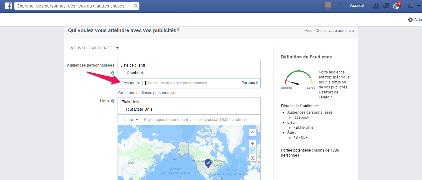 custom audience pour facebook